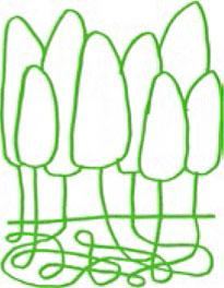 illustration-2