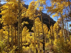 2013-10-06_15_04_21_changing_canyon_nature_trail_in_lamoille_canyon1